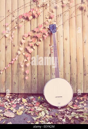 Banjo in autumn with leaves - Stock-Bilder