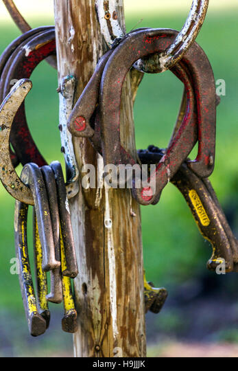 WY01185-00...WYOMING - Horse shoes at the CM Ranch near Duboise. - Stock Image