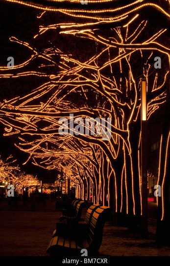 Trees decorated with lights, Unter Den Linden, Berlin, Germany - Stock Image