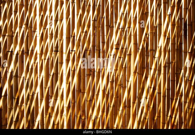 Bamboo wall, Brazil. - Stock Image