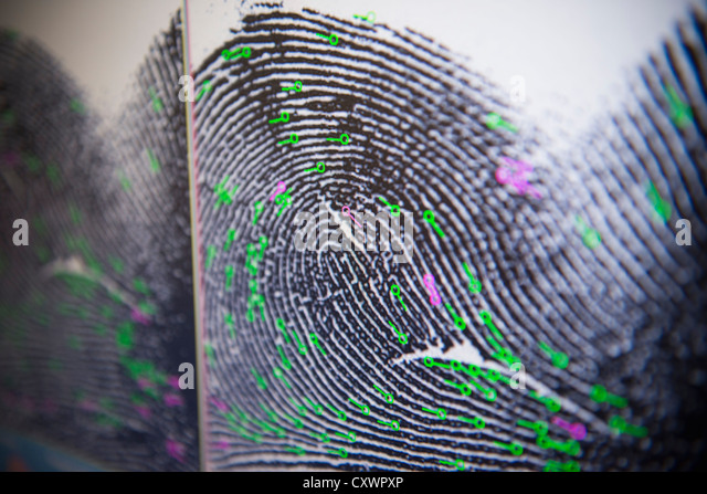 Fingerprint on screen in forensic lab - Stock Image