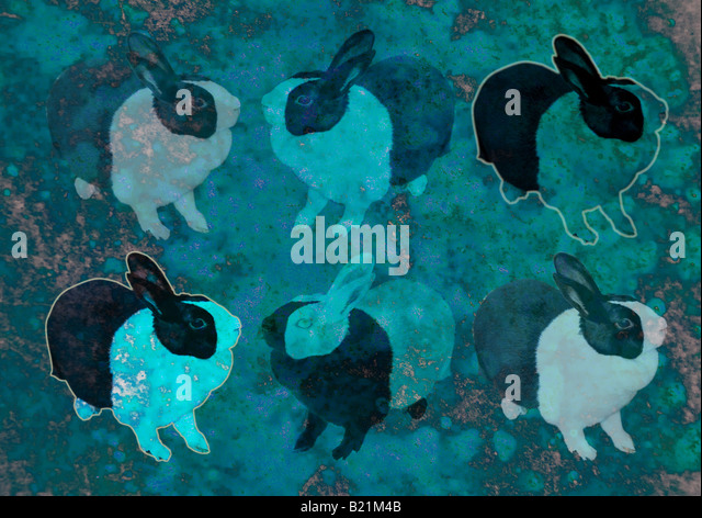 Illustration of rabbits - Stock Image