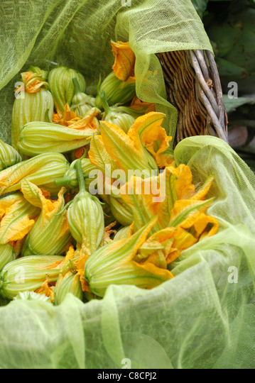 Basket of courgette flowers - Stock Image