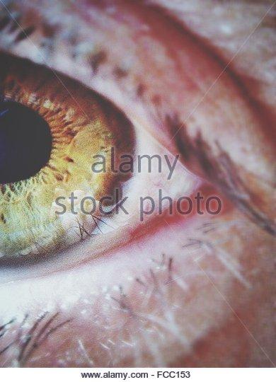 Extreme Close Up Of Eye - Stock-Bilder