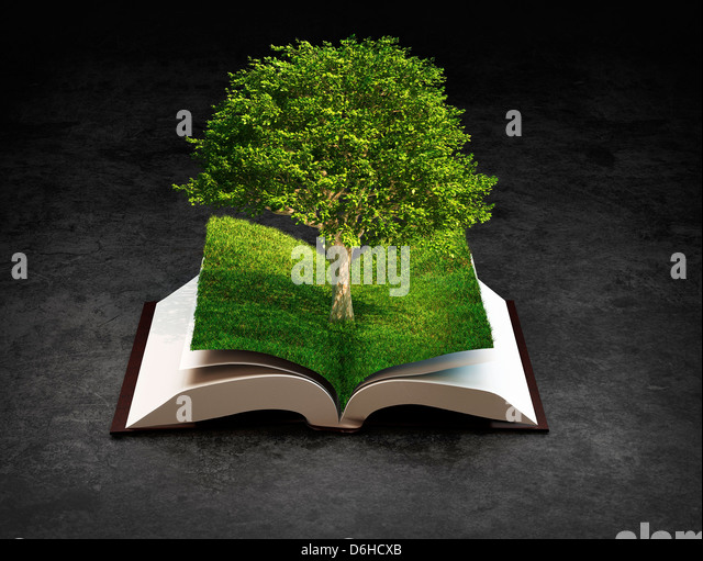 Knowledge, conceptual artwork - Stock Image