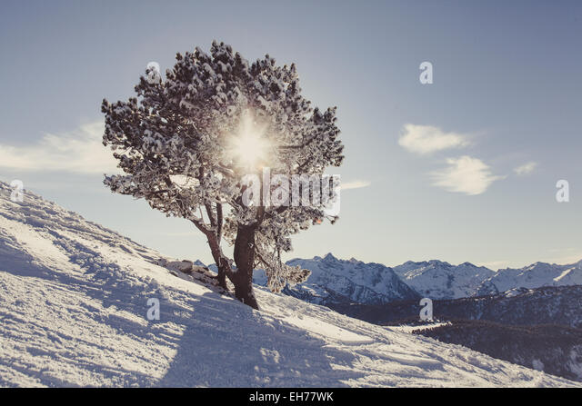 Pyrenees - Stock Image