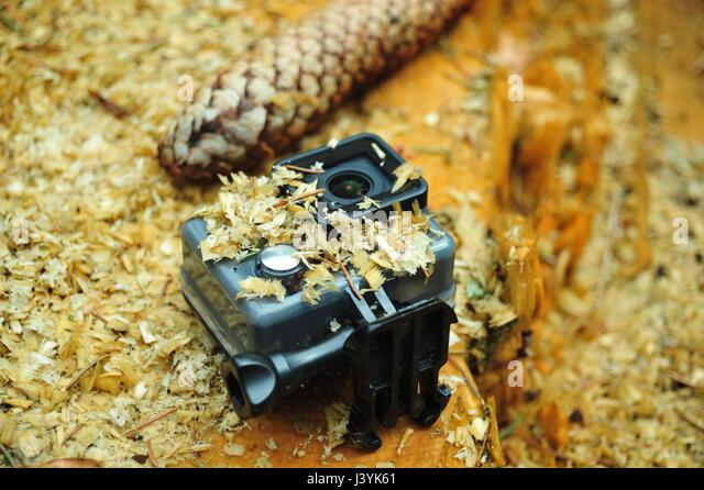 GoPro Outdoor Shooting, Thüringer Wald, Deutschland - Stock-Bilder