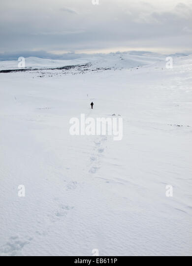 man in distance snowshoeing away from camera through a   winter mountain landscape with tracks in foreground - Stock Image