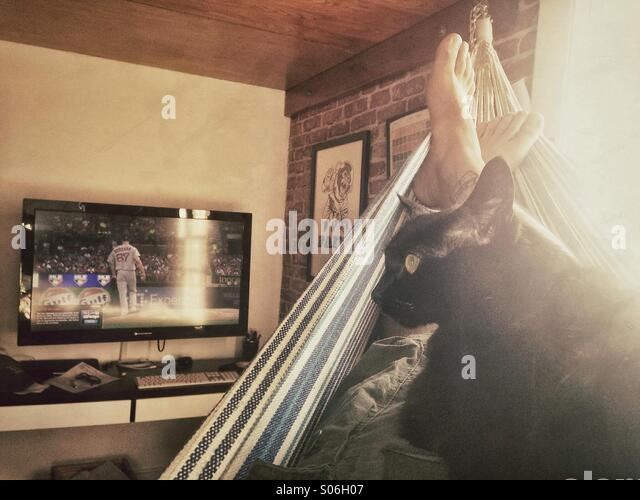 Feet and a cat in a hammock watching baseball - Stock Image