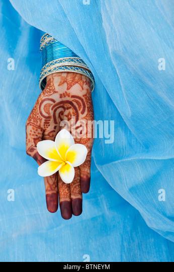 Indian girl wearing a blue sari with henna hands holding a Frangipani flower - Stock-Bilder