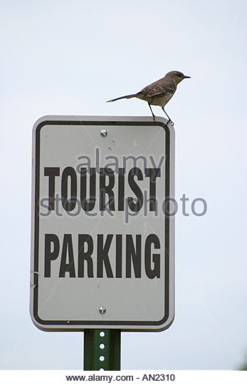 Mississippi Vicksburg Oak Street sign: Tourist Parking mocking bird - Stock Image