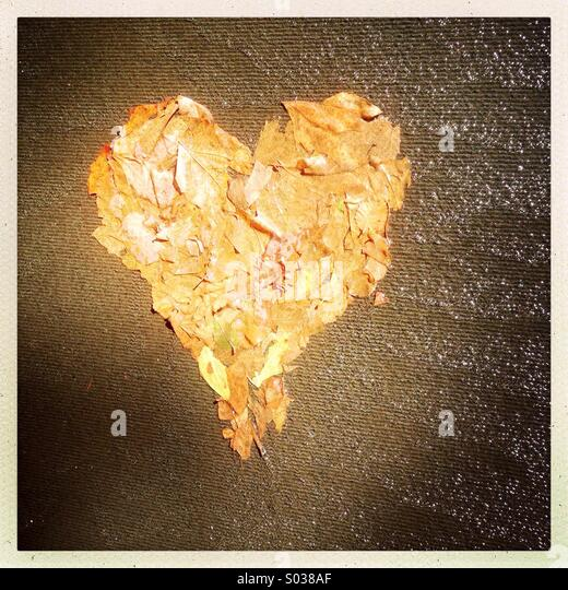 Love heart made out of leaves - Stock-Bilder