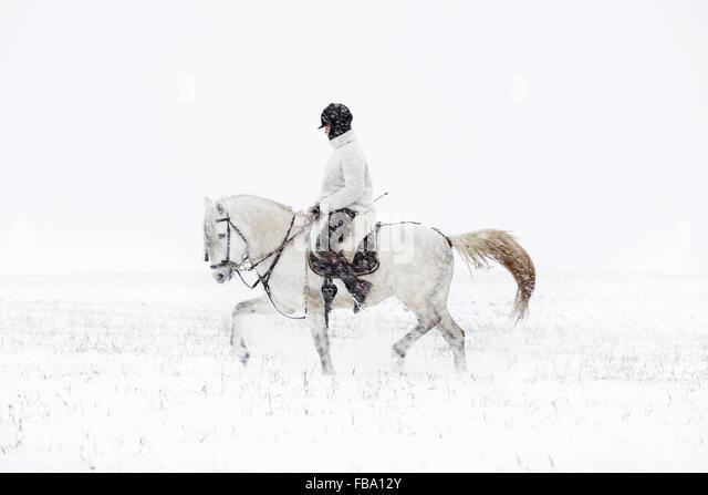Sweden, Teenage girl (14-15) riding horse - Stock Image
