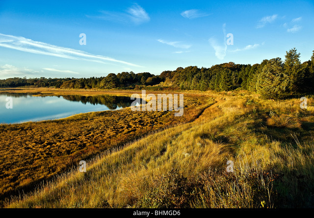 Salt pond and coastal wetlands, Eastham, Cape Cod, MA, Massachusetts, USA - Stock-Bilder