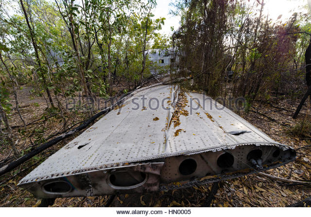 The wrecked wing of a DC-3 in the forest after crashing during WWII. - Stock Image