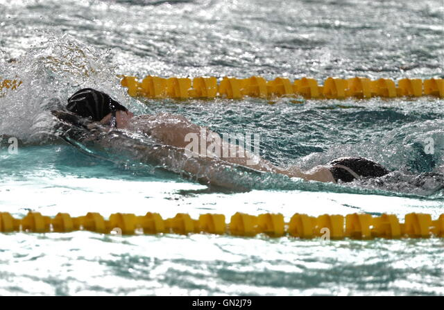 Natation stock photos natation stock images alamy - Chartres piscine olympique ...