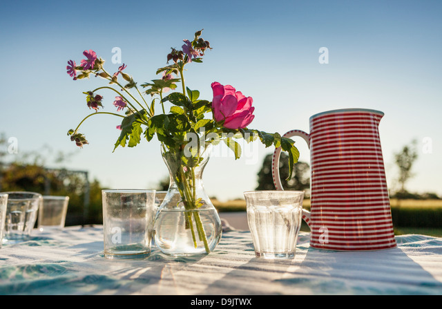 Sunlight on table of flowers, glasses and a jug - Stock Image