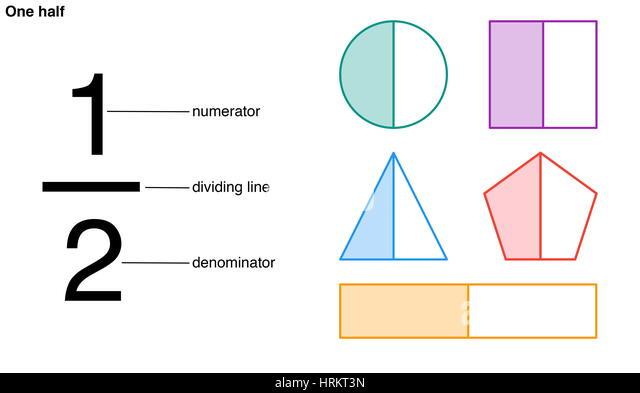 One half fraction with the numerator, dividing line, and denominator labeled. Divided into two equal parts, the - Stock Image