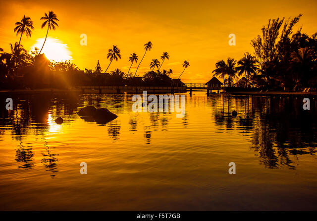 Sunset in a tropical paradise with palm trees and ocean - Stock Image