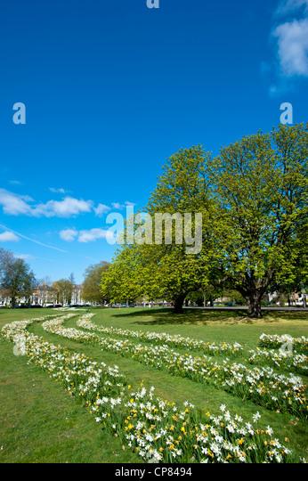 Spring on Ealing Common, London, United Kingdom - Stock Image