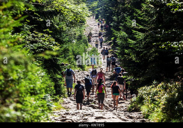 Crowd of people, Sumava National Park, Czech Republic - Stock Image