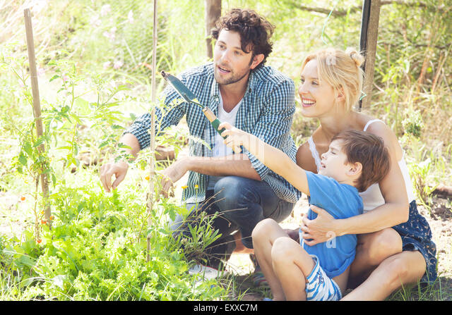 Little boy learning how to garden - Stock Image