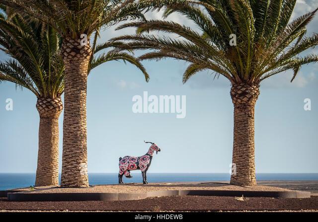 Colourful goat statue on a roundabout Fuerteventura Canary Islands Spain - Stock-Bilder
