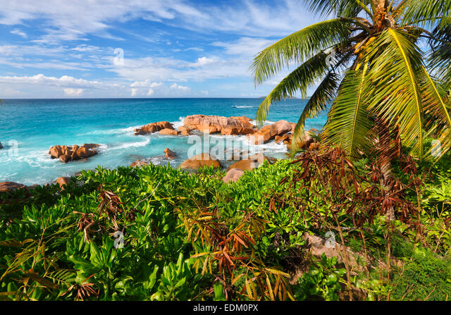 Seychelles, La Digue - Stock Image