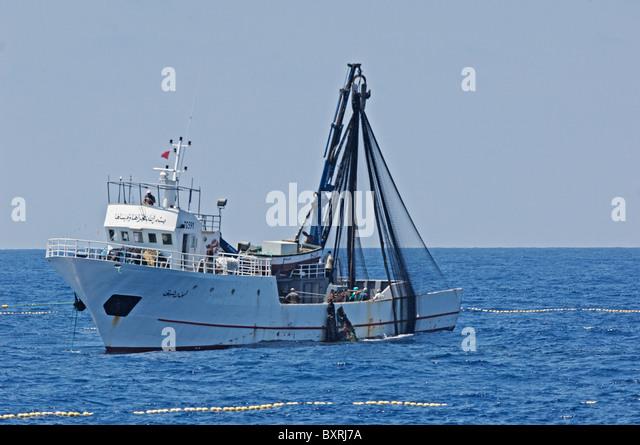 Blue fin tuna fishing stock photos blue fin tuna fishing for Purse seine fishing