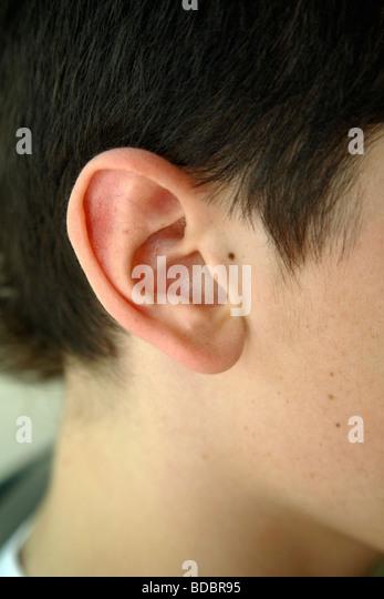 Closeup of an ear - Stock Image