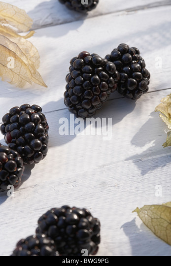 Blackberries on white table in sunshine - Stock Image