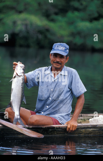 Honduras fisherman with small tarpon Cuero y Salado Wildlife Refuge near La Cieba - Stock Image