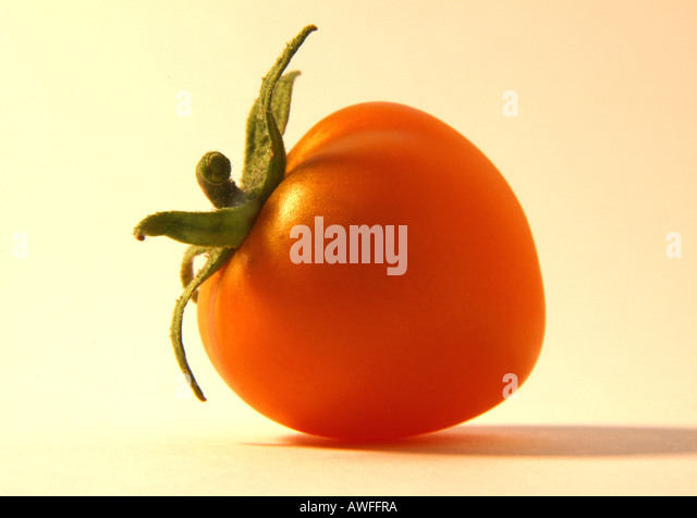 Yellow tomato 1 of 2 - Stock Image