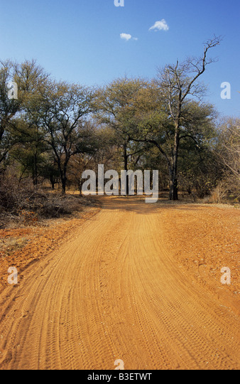 Yellow sand track disappearing in African bush travel adventure South Africa - Stock Image
