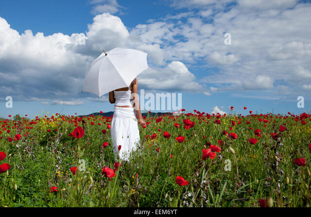 Woman with white umbrella standing in field of red poppies - Stock Image