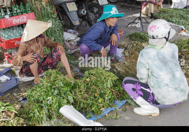 Women sort through their produce at Hoi An's riverside market, Hoi An, Vietnam, Indochina, Southeast Asia, Asia - Stock Image