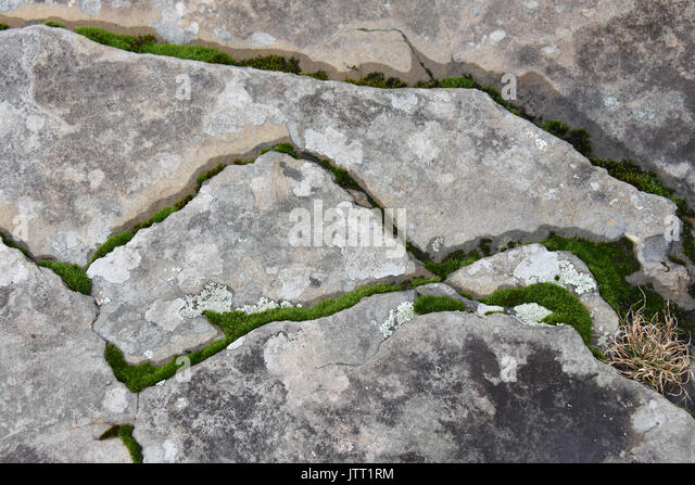 Rugged rock with moss and lichen - Stock Image