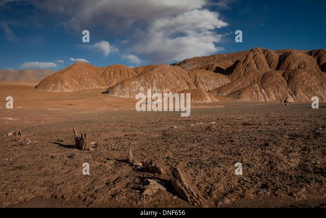 ARGENTINA SOUTH AMERICA TRAVEL ATACAMA DESERT - Stock-Bilder