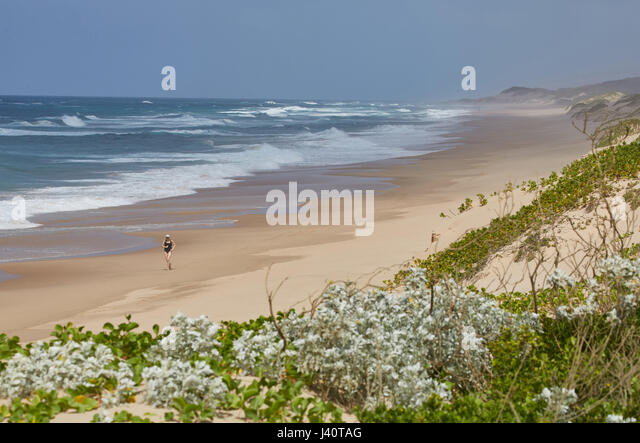 Jogging along the beach at the Indian Ocean in iSimangaliso-Wetland Park, South Africa, Africa - Stock Image