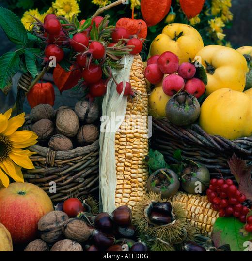 Harvest still life - Stock Image