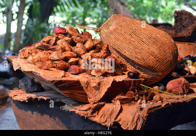 Aboriginal food stock photos aboriginal food stock for Aboriginal cuisine