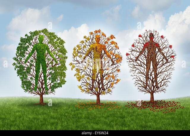 Human aging concept and deterioration of health due to disease in the body as a healthy green tree shaped as a person - Stock-Bilder