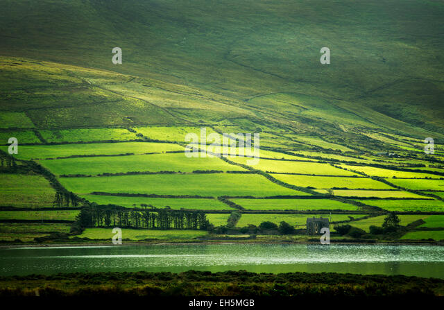 Green fields on the Ring of Kerry as seen from Valentia Island, Ireland - Stock Image