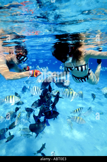 cozumel mexico Couple snorkeling and feeding fish underwater mexican caribbean riviera maya - Stock Image