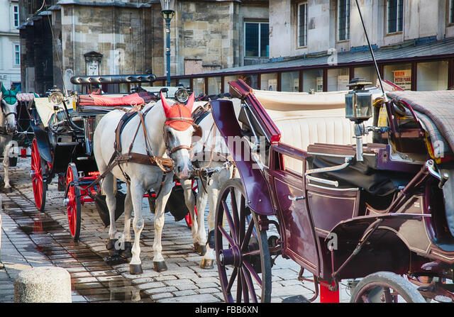 Horse-Drawn Carriages Waiting for Passengers, Stefansplatz, Vienna, Austria - Stock Image