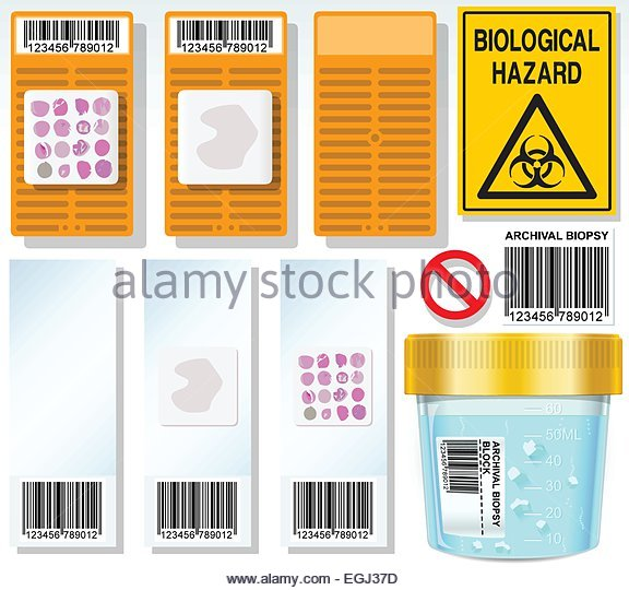 Detailed illustration of a Archival Biopsy Complete Set This illustration is saved in EPS10 with color space in - Stock Image
