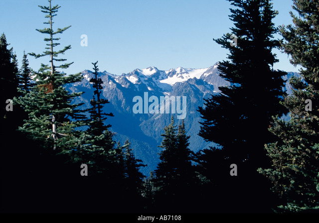 The mountains in Olympic National Park Washington in the Pacific Northwest COPYRIGHT DUANE BURLESON - Stock Image