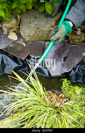 Small garden pond stock photos small garden pond stock for Garden pond hose