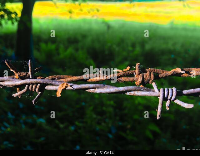 Barbed wire - Stock-Bilder