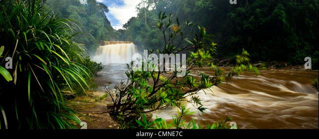 Maliau Falls (6th of 7 tiers) on the Maliau River. Centre of Maliau Basin - Sabah's 'Lost World' - Borneo. - Stock Image